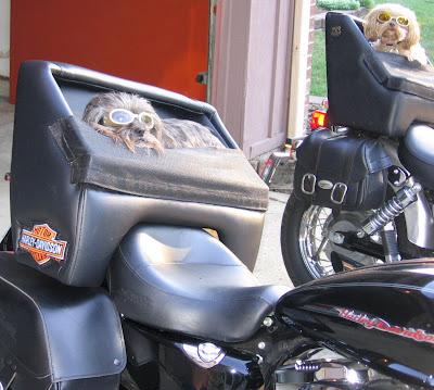 fotos de motos- imagem de motos