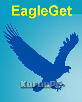 EagleGet 2.0.3.3 + Portable