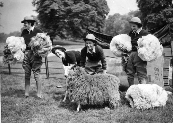 15 May 1940 worldwartwo.filminspector.com Hyde Park shearing sheep