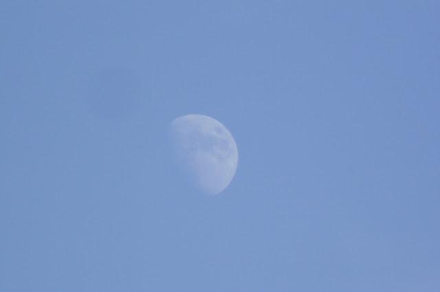 луна днем