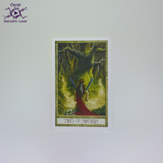The Druid Craft Tarot - 2 of Swords