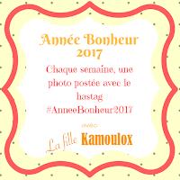 http://www.lafillekamoulox.com/annee-bonheur-2017/