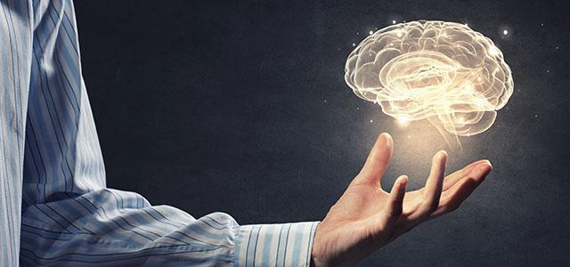 O poder de criar o sucesso. Mudei meus hábitos e crenças. Por Paulo Leandro Leall