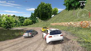 Rally Fury - Extreme Racing v1.14 Mod