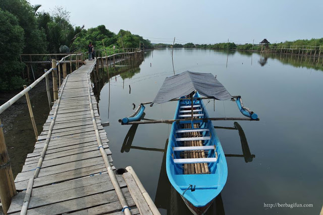 Keliling hutan mangrove Congot dengan perahu.
