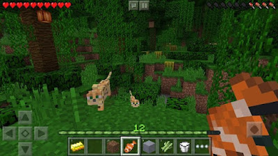 minecraft-screenshot-1