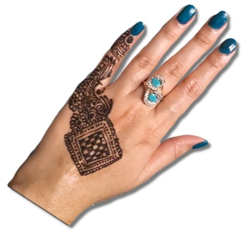 Fingers Mehndi Designs