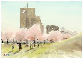 桜 水彩スケッチ Cherry Blossom Watercolor