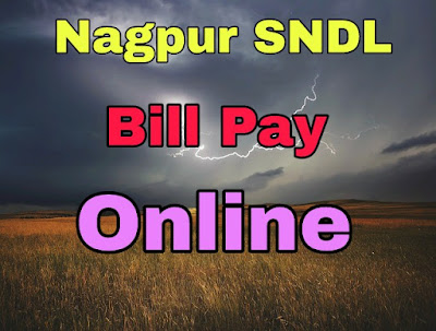 Nagpur SNDL Electricity Bill Pay online
