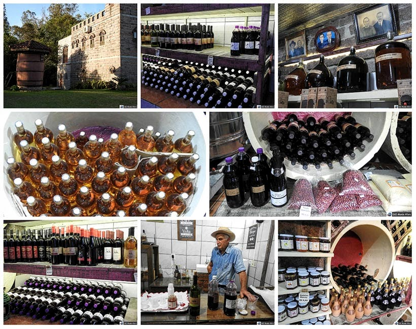 O que fazer em Nova Veneza, Santa Catarina - Vinícola Borgo