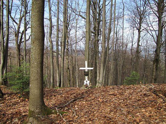 Mogiła żołnierzy poległych w latach 1914-1915.