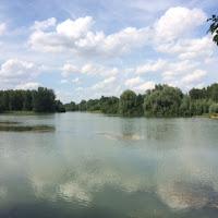 Lac du Der | Karpfenangelsee Frankreich