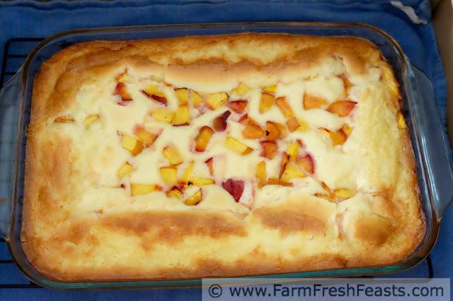 a photo of peach gooey butter cake in the car trunk