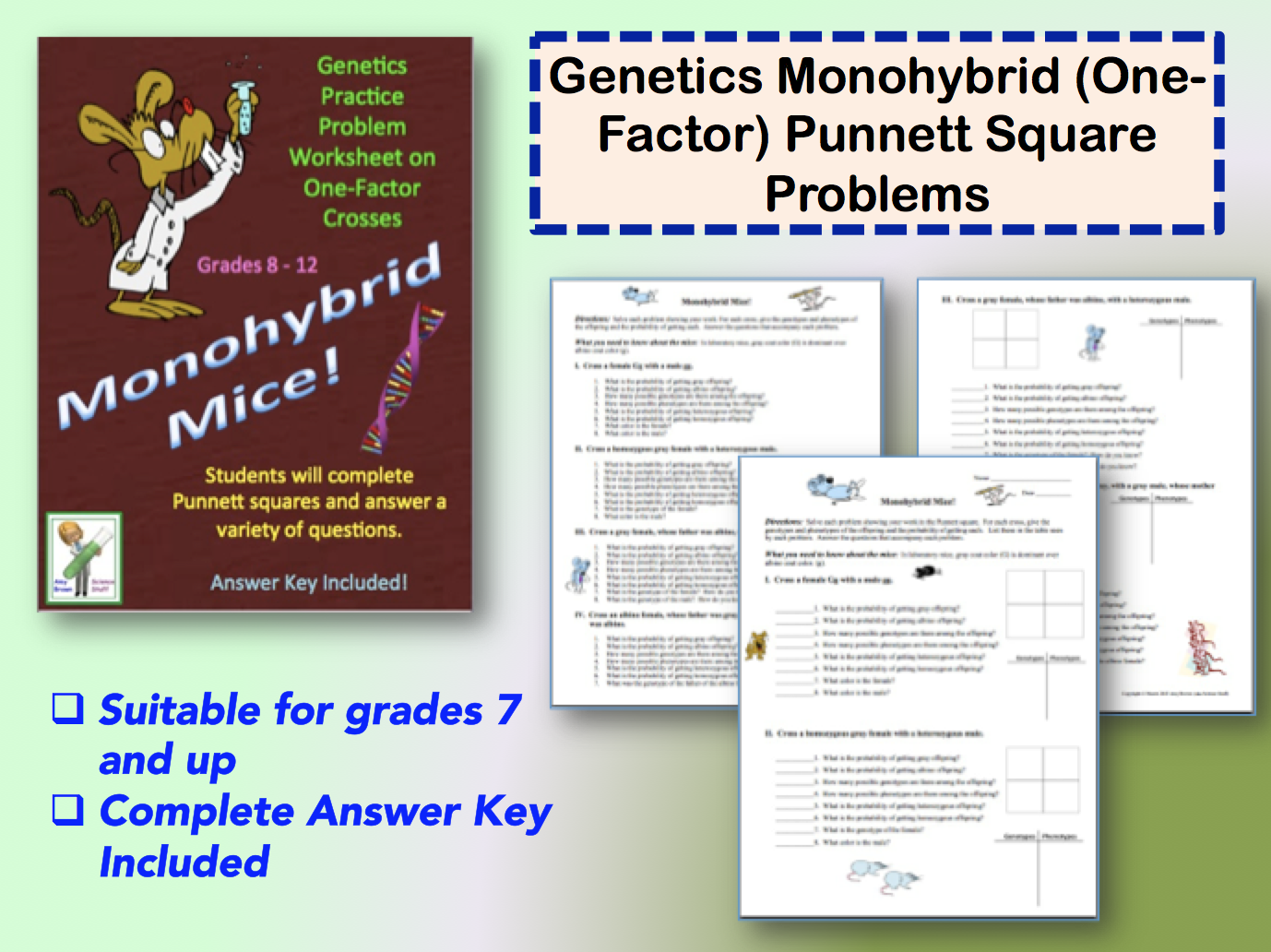 Classroom Freebies Genetics The Monohybrid One Factor