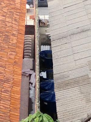 Água acumulada em tampas de tanques de casarão desabitado preocupa vizinhança