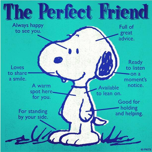 Snoopy+Friend.jpg (613×613)