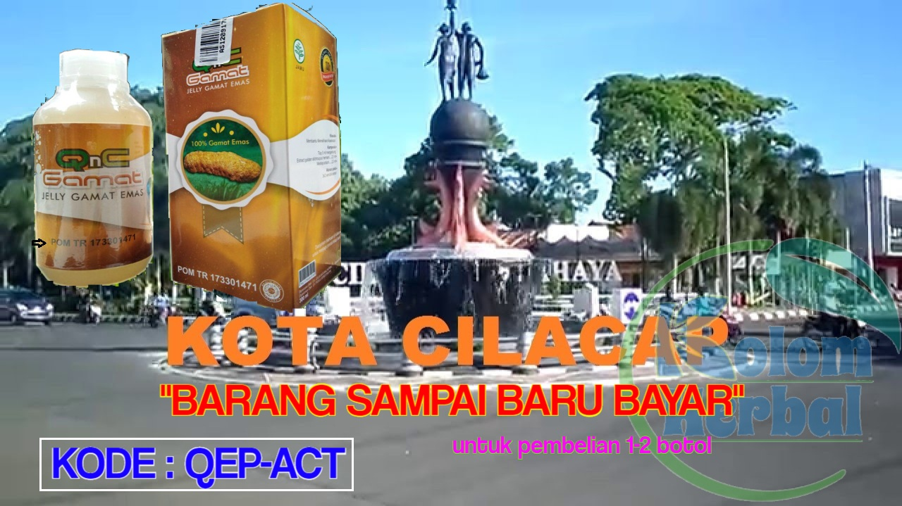 Agen Qnc Jelly Gamat Di Cilacap