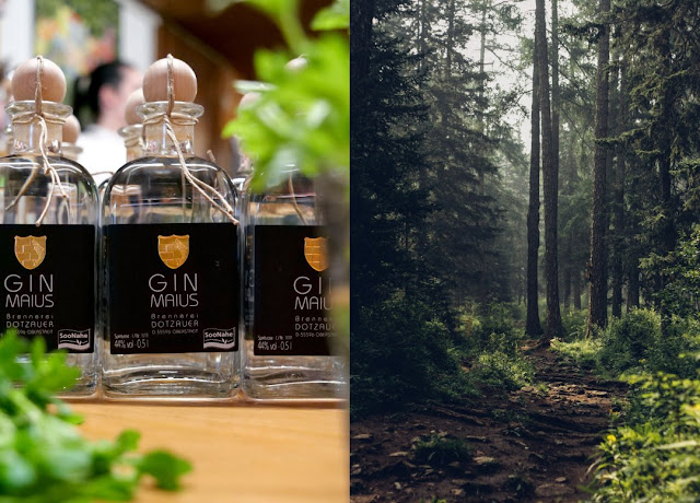 Der Gin Maius wird mit Maikraut und Wacholder aus dem Soonwald erzeugt.