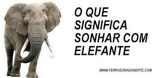 significado sonho elefante