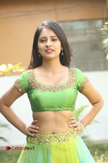 Actress Nikitha Bisht Stills in Lehenga Choli at Pochampally Ikat Art Mela Launch  0249.JPG