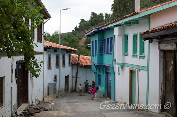 Misi Köyü'nün renkli tarihi evleri, Bursa