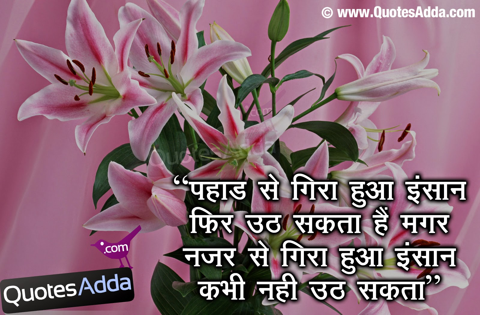 Nice Thoughts In Hindi Love Mc Plc