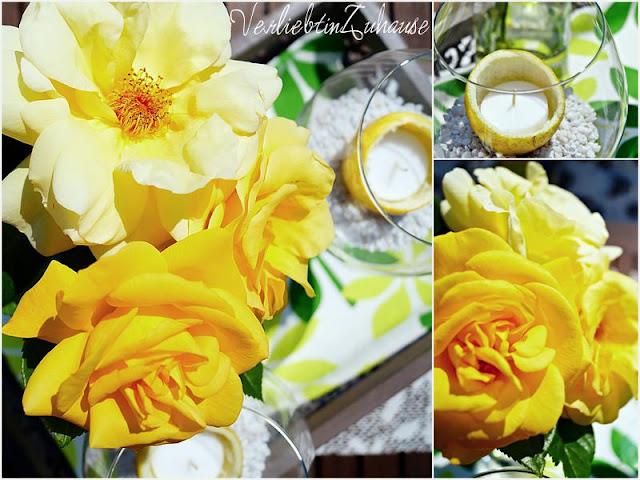 """Fotoaufnahmen von den Blüten meiner """"Arthur Bell""""-Rose"""