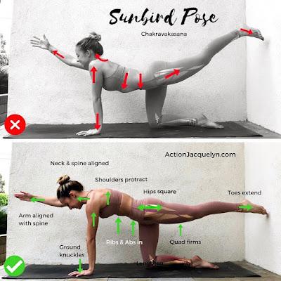 Stretching Exercises & Correct Form