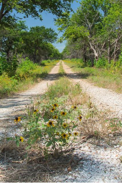Meadow Pond Trail, Hagerman NWR