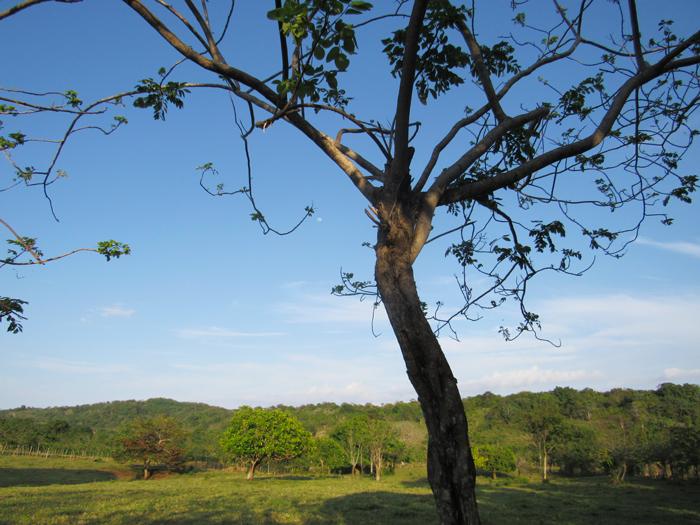 wanderlust, aventura, exploaración, ecoturismo, playas, vacaciones, República Dominicana