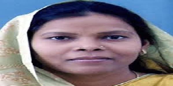 Hardoi-seat-se-baspa-sapa-gathbandhan-pratyashi-ne-naamankan-me-di-galat-jaankari
