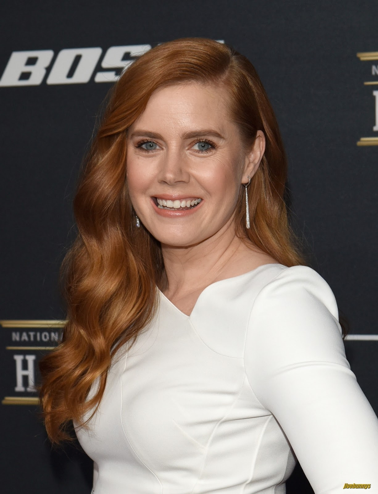 Amy Adams HQ Photo Gal... Amy Adams