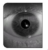Circular Iris Location (Penny Khaw, 2002) Figure 5: Circular Iris Location