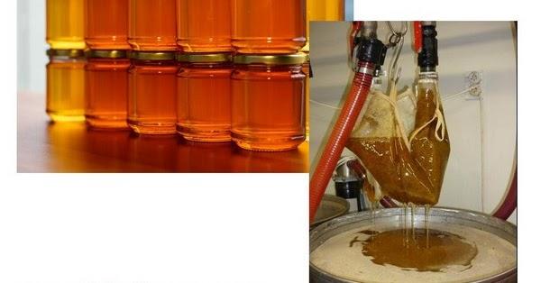 Usaha rumahan 2020 modal kecil menjadi distributor madu ...