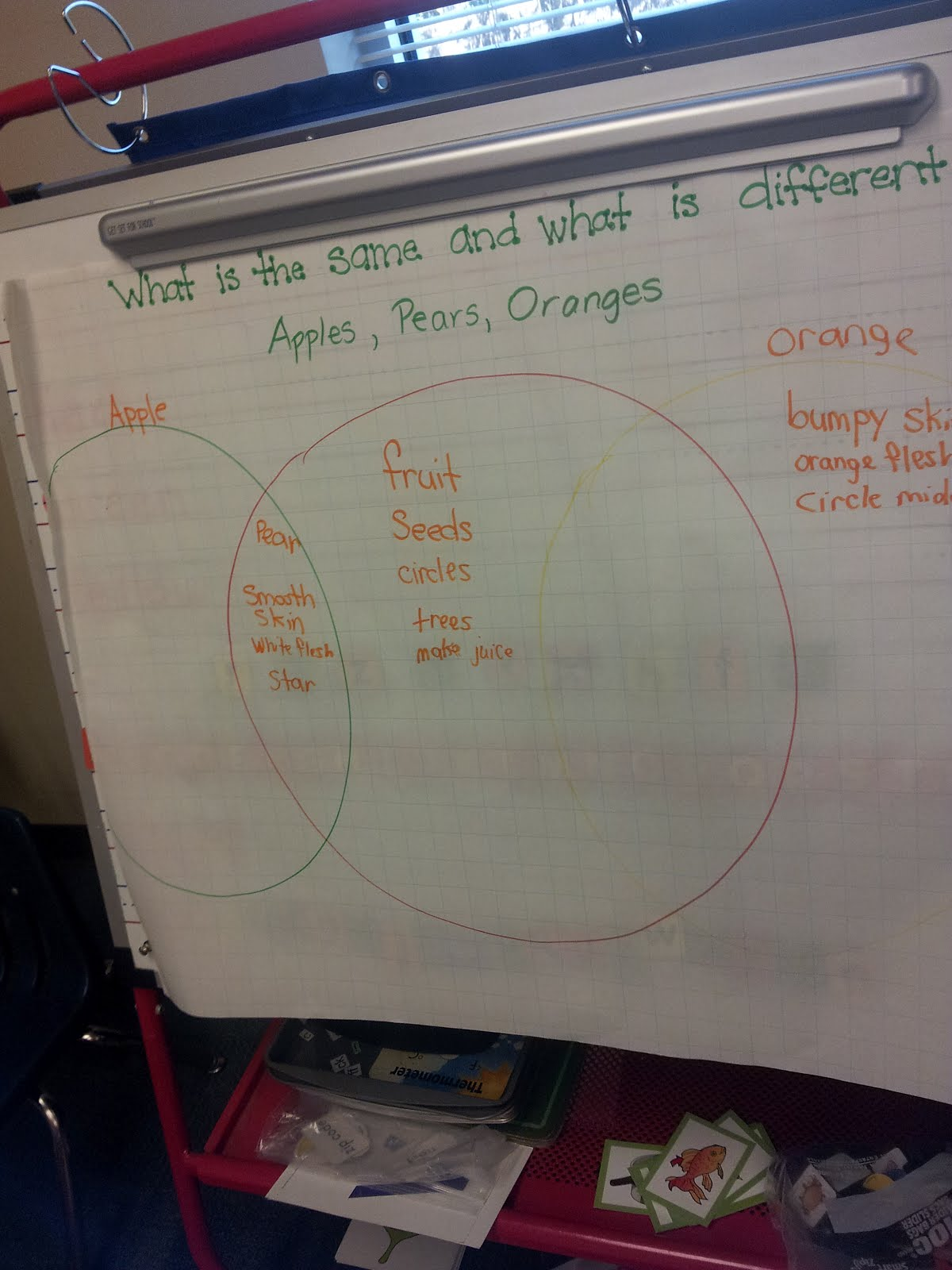 The Crazy Pre K Classroom Apple Tasting Graph And Venn