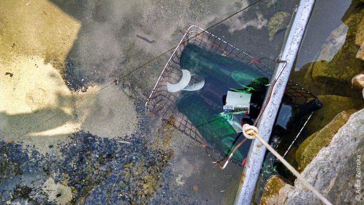 Источники бьют из под земли, Черногория