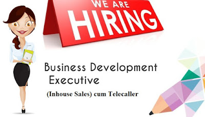 Telecaller cum Business Development Executive (Inhouse Sales)