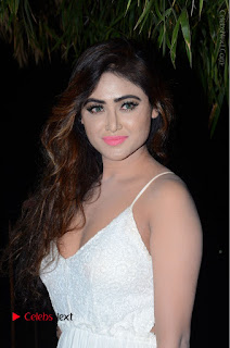 Telugu Actress Model Sony Charishta Pos in White Long Dress at Nanna Nenu Na Boyfriends Audio Launch  0168.JPG