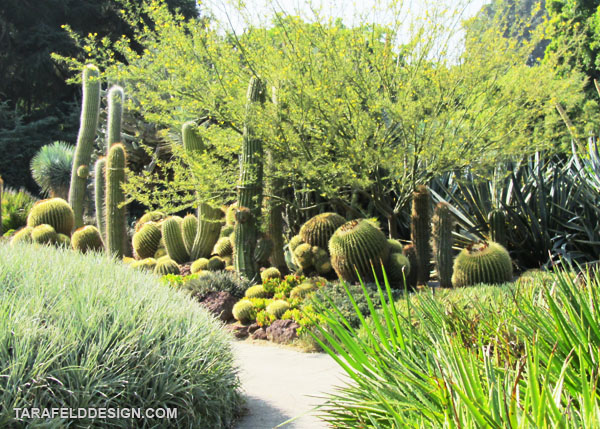 The Huntington Botanical Gardens - My L.A. Lifestyle