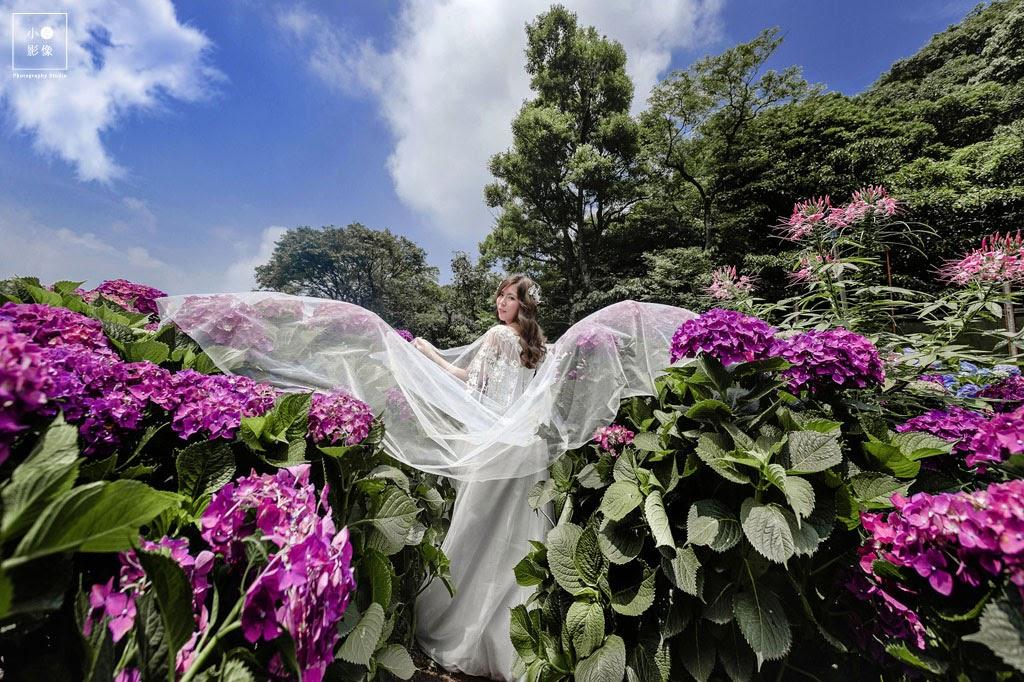 小葉影像,高家繡球花,婚紗寫真,台北婚攝,影像創作,