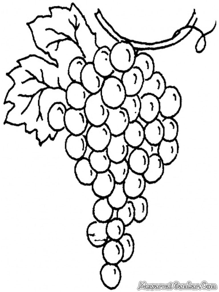 Koleksi Mewarnai Gambar Anggur