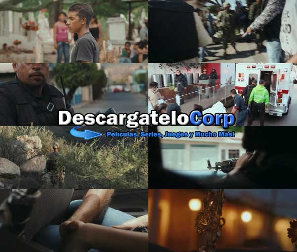 Tierra de Carteles DVDRip Latino