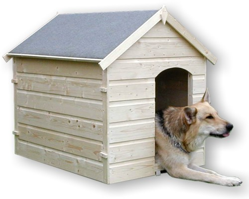 New Blog 1 Kennel