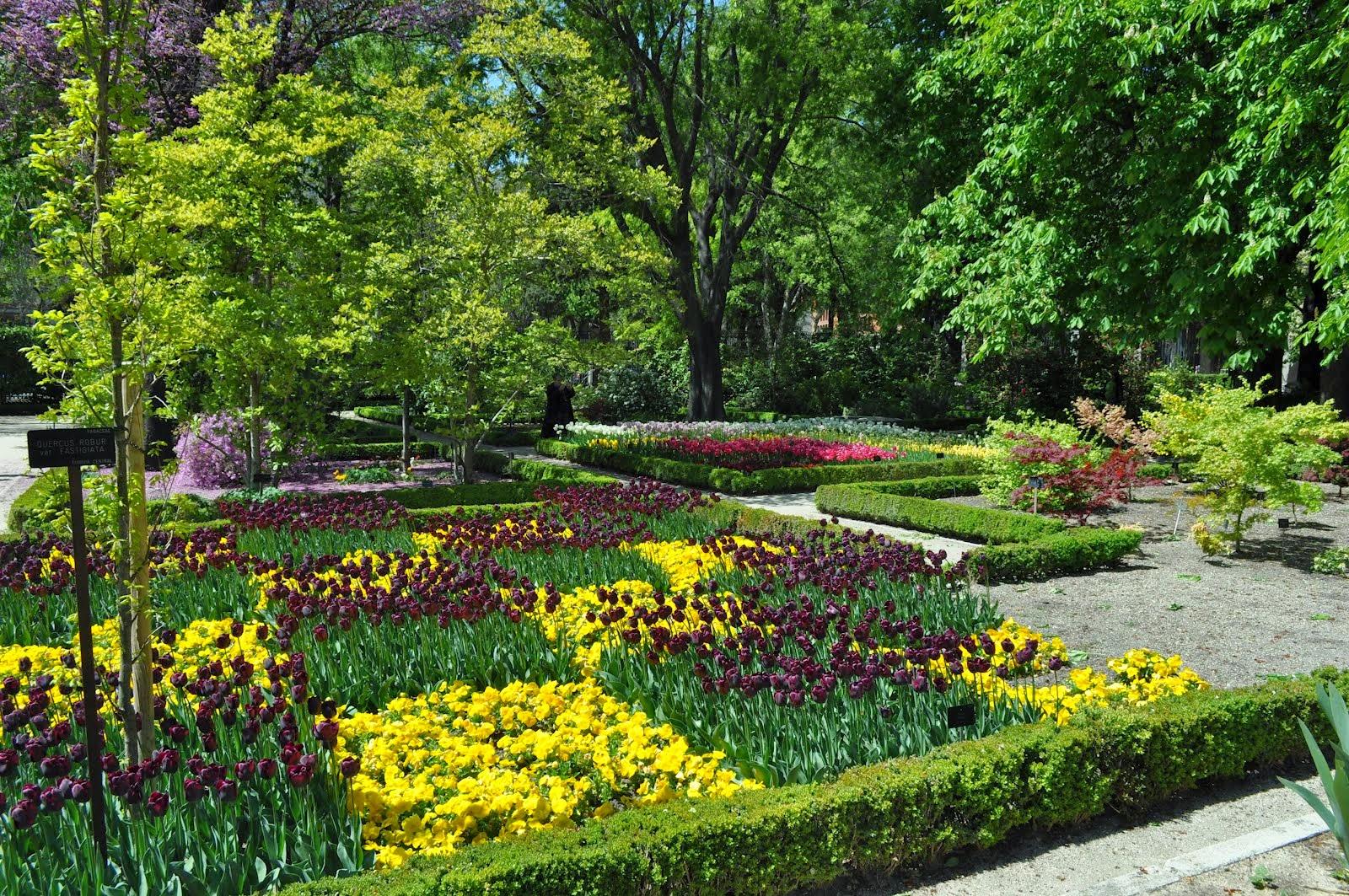 Real Jardín Botánico em Madri