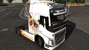 Grumpy Cat skin for Volvo 2012
