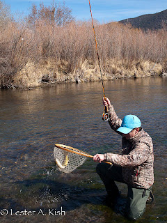 Netting a Brown Trout on DePuy Spring Creek
