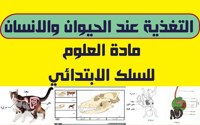 درس التغذية عند الحيوان والانسان مادة العلوم للسلك الابتدائي