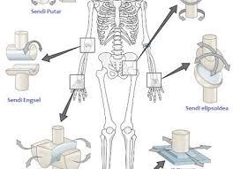 Cara mengatasi nyeri lutut alami