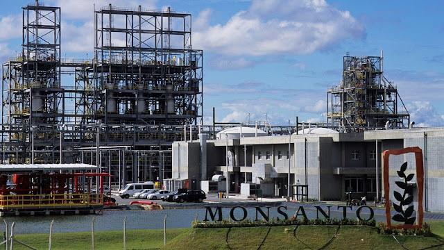 Resultado de imagem para Monsanto industria quimica