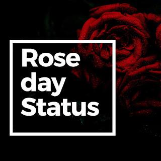 Rose day images,status